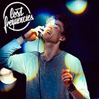 Lost Frequencies - Various songs